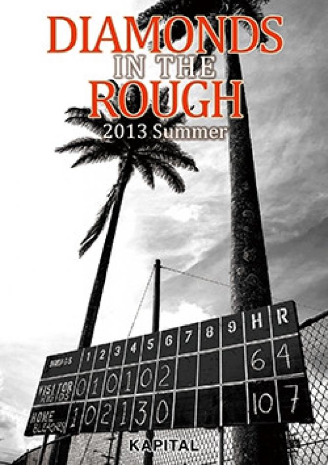 2013 Summer